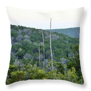 Hill Country Throw Pillow