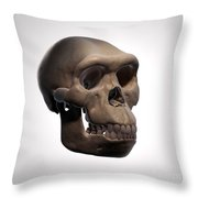 Homo Habilis Skull Throw Pillow