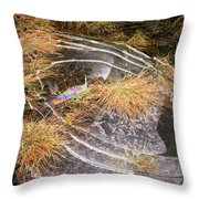 5. Ice Prismatics In Grass 2, Loch Tulla Throw Pillow