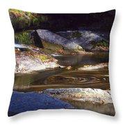 Waterfall Swirl Throw Pillow