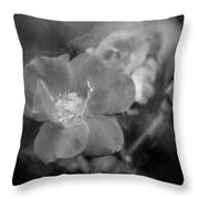 Knockout Roses Painted Bw Throw Pillow