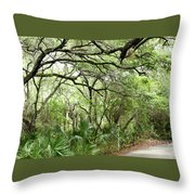Lakes Park Throw Pillow