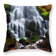 Landscape Framed Throw Pillow