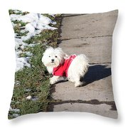 My Small Dog Throw Pillow