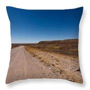 Namibia Road Throw Pillow