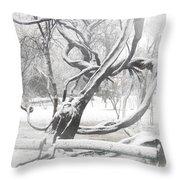 Park During Heavy Snowfall  Throw Pillow