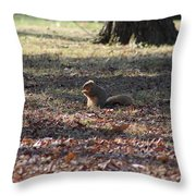 Photo Art Throw Pillow