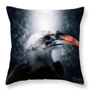 Red-billed Hornbill ,samburu, Kenya Throw Pillow