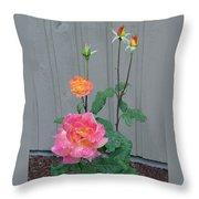 5 Roses In Rain Throw Pillow