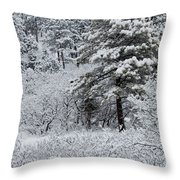 Snowstorm In The Pike National Forest Throw Pillow