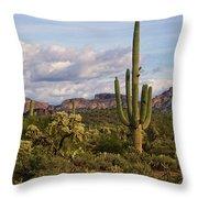 Sonoran Desert  Throw Pillow