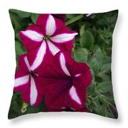Sounds Of Summer  Throw Pillow