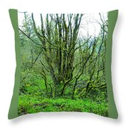 Spring In The Gorge Throw Pillow