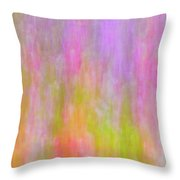 Summer Impression Series Panorama - Flowers Throw Pillow by Ranjay Mitra