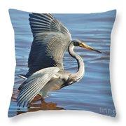 Tri Colored Heron Throw Pillow