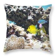 Tropical Fish Throw Pillow