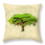 Umbrella Thorn Acacia Acacia Tortilis, Negev Israel Throw Pillow