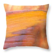 Underwater Close-up Throw Pillow