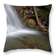 Waterfall, Quebec Throw Pillow