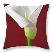 White Calla Throw Pillow by Heiko Koehrer-Wagner