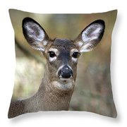White Tailed Deer Smithtown New York Throw Pillow