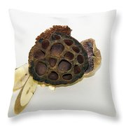 Wooden Decorations Throw Pillow