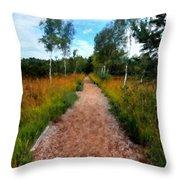 Modern Landscape Throw Pillow