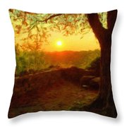 Nature In Throw Pillow