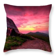New Landscapes Throw Pillow
