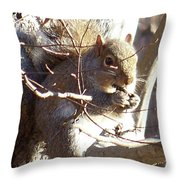 5000-squirrel Throw Pillow