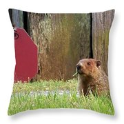 5002-groundhog Throw Pillow