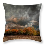 4108 Throw Pillow