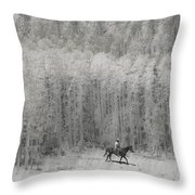 4147 Throw Pillow