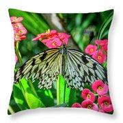 5050- Butterfly Throw Pillow