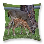 5089 Throw Pillow