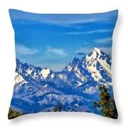 Color Landscape Throw Pillow