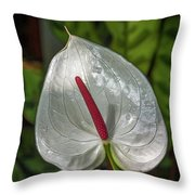 5129- Flower Throw Pillow