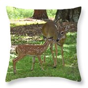 5170 Throw Pillow