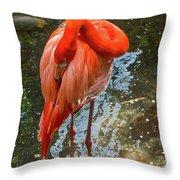 5182- Flamingo Throw Pillow