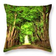 Landscape Native Throw Pillow