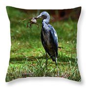 5380 Throw Pillow