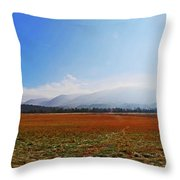 Great Smoky Mountains National Park Throw Pillow