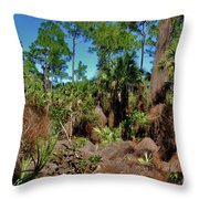 55- Everglades Afternoon Throw Pillow