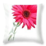 5519c2-002 Throw Pillow