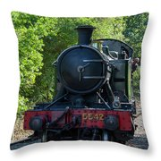 5542 On The The Points Throw Pillow