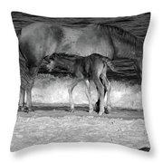 569b Throw Pillow