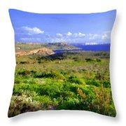 Landscape Images Throw Pillow