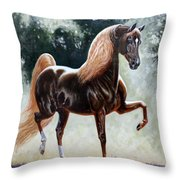 #57 - Remembering A Star Throw Pillow