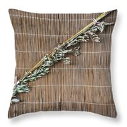 5715 - Herb Throw Pillow