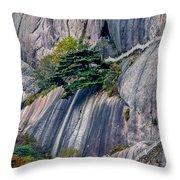 5786- Yellow Mountains  Throw Pillow
